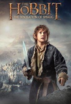 مشاهدة وتحميل فلم The Hobbit: The Desolation of Smaug الهوبيت: قفرة سموغ اونلاين