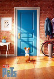 مشاهدة وتحميل فلم The Secret Life of Pets الحياة السرية للحيوانات الأليفة اونلاين