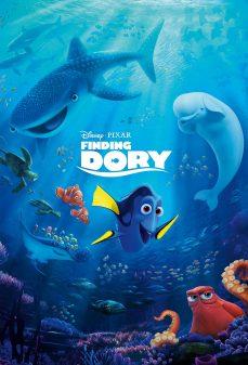 مشاهدة وتحميل فلم Finding Dory البحث عن دوري اونلاين