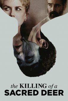 مشاهدة وتحميل فلم The Killing of a Sacred Deer مقتل غزالة مقدسة اونلاين