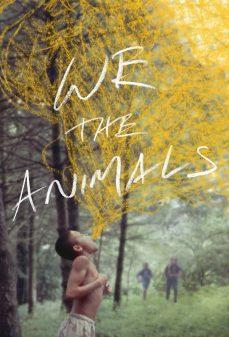 مشاهدة وتحميل فلم We the Animals  اونلاين
