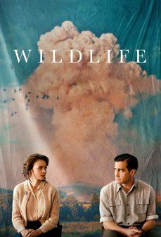 مشاهدة وتحميل فلم Wildlife الحياة البرية اونلاين