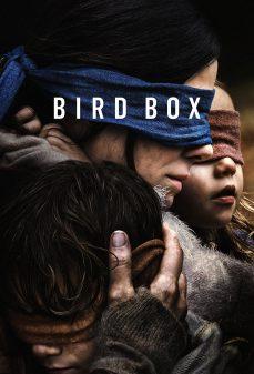 مشاهدة وتحميل فلم Bird Box صندوق الطائر اونلاين