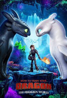 مشاهدة وتحميل فلم How to Train Your Dragon: The Hidden World كيف تروّض تنينك: العالم الخفي اونلاين