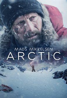 مشاهدة وتحميل فلم Arctic قطبي  اونلاين