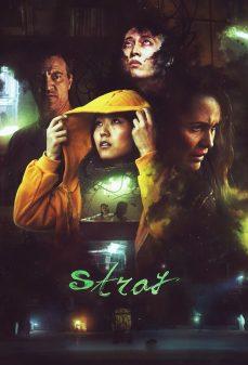 مشاهدة وتحميل فلم Stray شارد اونلاين