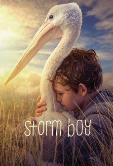مشاهدة وتحميل فلم Storm Boy فتى العاصفة اونلاين