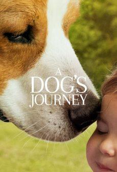 مشاهدة وتحميل فلم A Dogs Journey رحلة كلب اونلاين