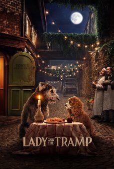 مشاهدة وتحميل فلم Lady and the Tramp ليدي وترامب اونلاين