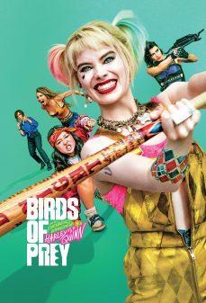 مشاهدة وتحميل فلم Birds of Prey الطيور الجارحة اونلاين