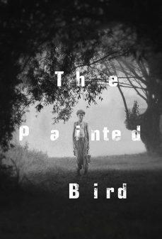 مشاهدة وتحميل فلم The Painted Bird الطائر الملون اونلاين