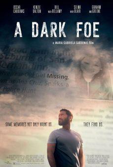مشاهدة وتحميل فلم A Dark Foe عدو الظلام اونلاين