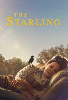 مشاهدة وتحميل فلم The Starling الزرزور اونلاين