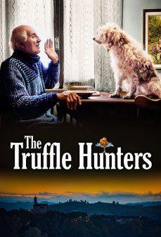 مشاهدة وتحميل فلم The Truffle Hunters صيادي الكمأة اونلاين